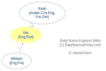 meaning of vas vas meaning of vas what does vas