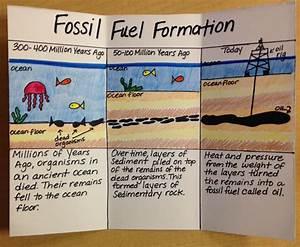 Fossil Fuel Formation Homeschool Science 6th Grade