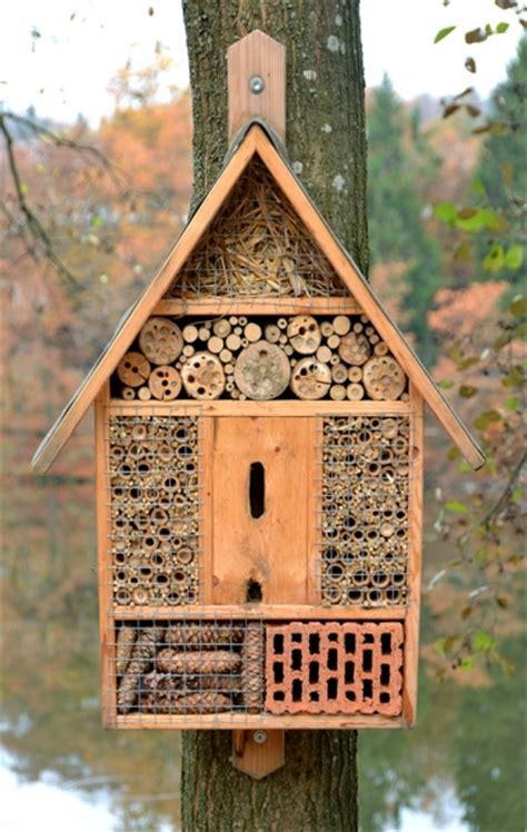 eco evolution blogbuilding insect hotel winter hibernation
