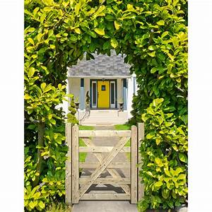 Portillon bois anglaise naturel h120 x l100 cm leroy for Leroy merlin terrasse et jardin 1 portillon bois anglaise naturel h 120 x l 100 cm leroy