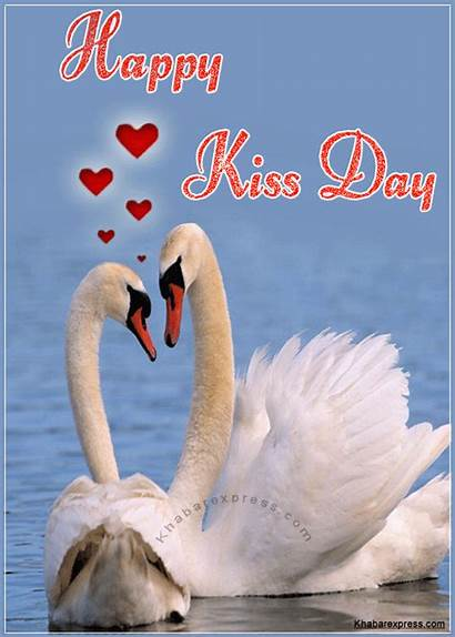 Kiss Happy Animated Kissing Greeting Swans Flamingo