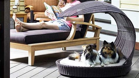Chaise Lounge For Dogs by Top 10 Outdoor Beds Outdoor World