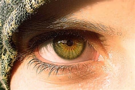 Martin-schultz Scale Of Human Eye Colour
