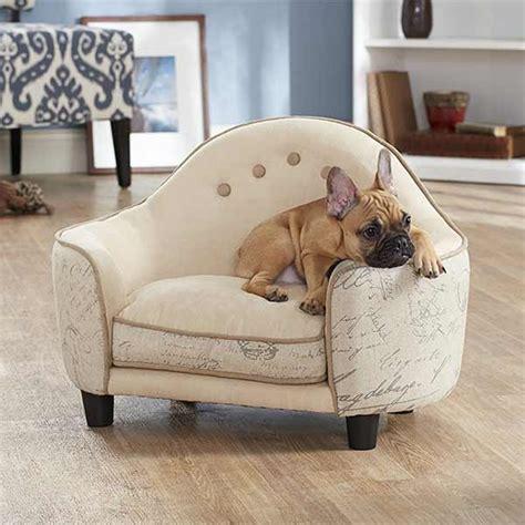 répulsif canapé repulsif chien pour canape 28 images photos canap 233
