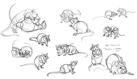 jeux de rat apprenez 224 vos rats 224 jouer avec vous le jeu de la bataille et la pirouette animogen