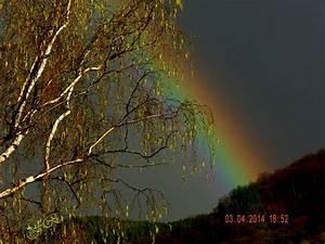 Schöne Momente Bilder : regen und sonne zaubert sch ne momente foto bild regenb gen wetter natur bilder auf ~ Orissabook.com Haus und Dekorationen