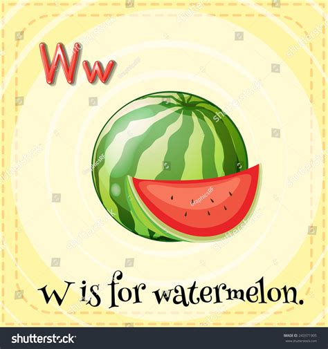 letter w is for walk stock vector image 71024801 illustration alphabet w watermelon stock vector 243371905