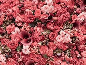 Coralee's Florist & Decor