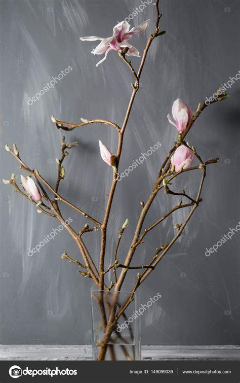 magnolia in vaso magnolia fiori in vaso di vetro magnolia stellata natura