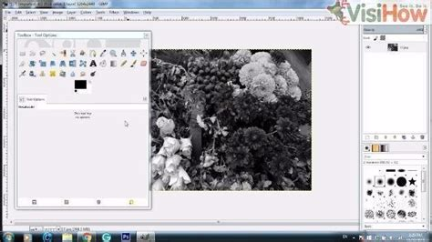 Convert Images To Black And White In The Gimp Application