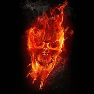 Skull Wallpaper - adam 613ca