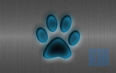 Paw Backgrounds Dog Desktop Wallpapers Computer Viewing