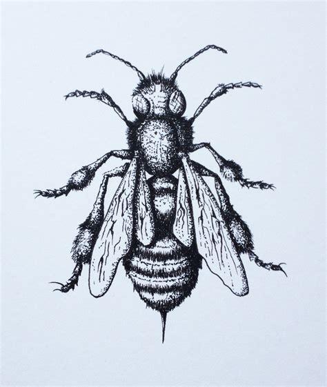 bee drawing   clip art  clip art
