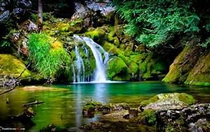 Inspirational Quotes & Nature Wallpapers: Most Beautiful ...