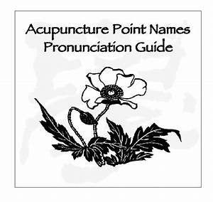 Pronunciation Guide To Acupuncture Points  Audio Cd
