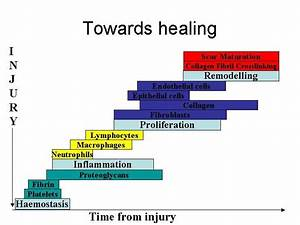 Pictures Of Healing