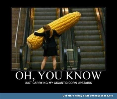 Corny Memes - elevator memes sees inc