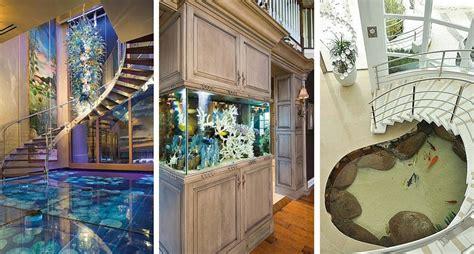 spectacular fish tanks  show true dedication   hobby