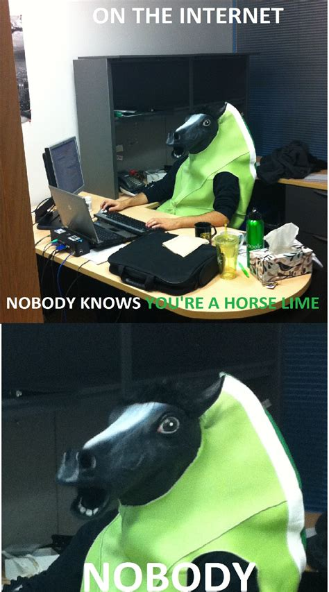 internet   youre  horse lime