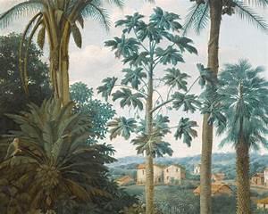 Papier Peint Ananbo : panoramique archives billie blanket ~ Melissatoandfro.com Idées de Décoration