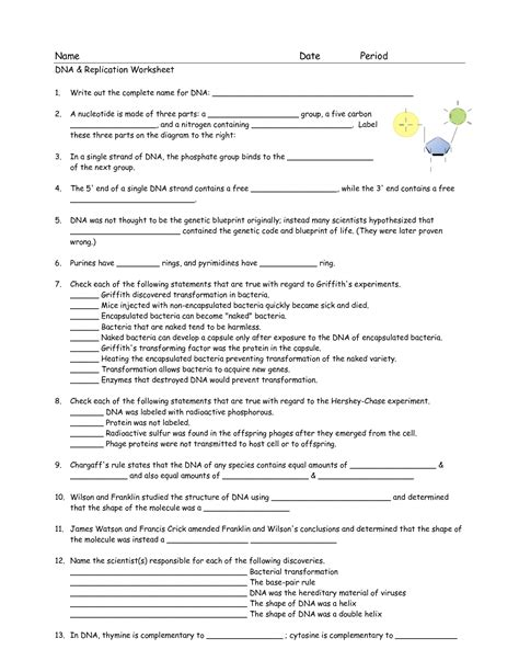 17 Best Images Of Dna Worksheet Printable  Dna Rna Structure Worksheet, Dna Coloring Page For