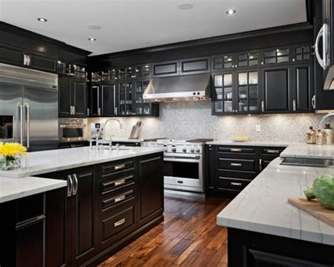 Black Cupboard by Black Cabinets Home Design Ideas Pictures Remodel And Decor