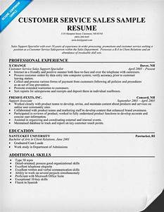 Sample resume templates customer service platinum class for Customer service sales resume