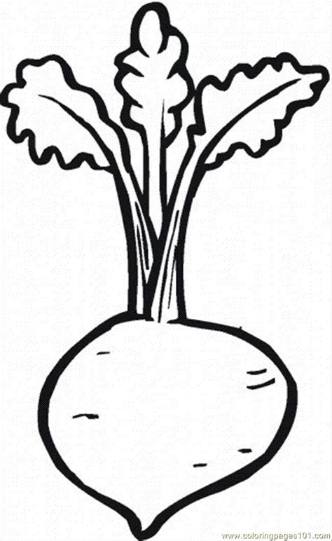 beetroot  coloring page  printable coloring pages coloring pages  printable