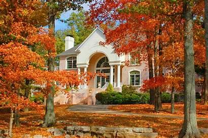 Homes Fall Autumn Houses Nice Trees Calm