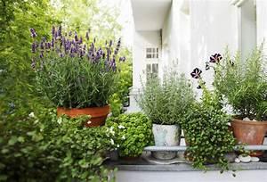 Balkon Im Winter Gestalten : kwiaty na balkon od strony p nocnej co wybra claudia ~ Markanthonyermac.com Haus und Dekorationen