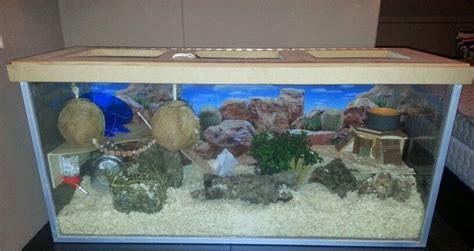 aquarium cages for hamsters hamster cage habitat aquarium terrarium 100x36x45 lxbxh house for my 2 cbell