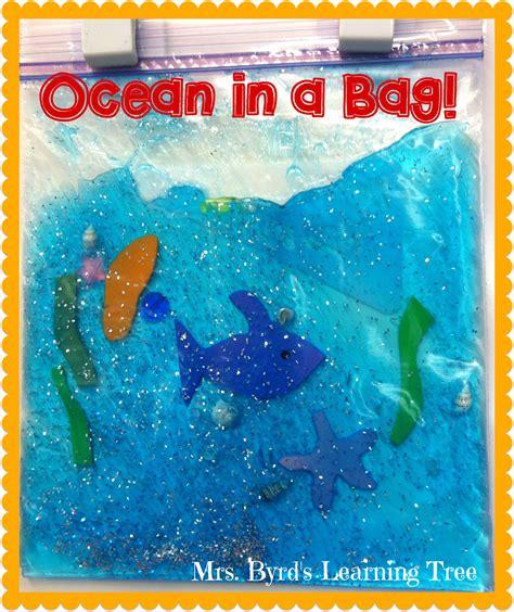 mrs byrd s learning tree in a bag 189 | Ocean in a Bag!