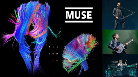 Muse Wallpaper And Background