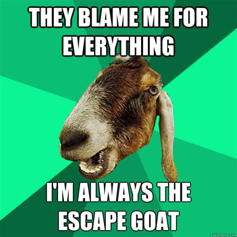 Goat Memes - they blame me for everything i m always the escape goat incorrect expression goat quickmeme