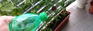 Pflanzen Bewässern Urlaub : blumen gie en im urlaub so einfach ist es wirklich anleitung ~ Watch28wear.com Haus und Dekorationen