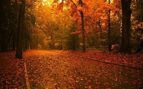 Autumn Wallpapers by Autumn Wallpapers Autumn Stock Photos