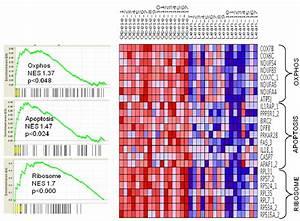 Gene-set enrichment analysis . Gene-set enrichment ...