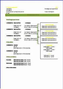 CV templates Design 2