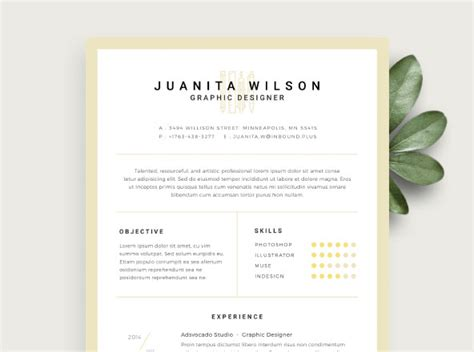 Clean Resume Template Free by Premium Free Assets For Designers
