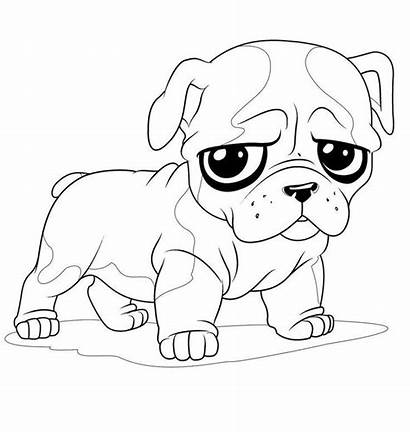 Coloring Pages Dog Puppy