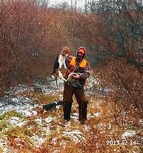Skyview's Beagles Rabbit Hunting Snow, Ice, Rain Sleet ...