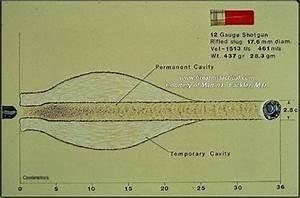 12 gauge buckshot penetration