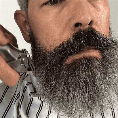 Beard Grooming Handsome Male Trim Keep Clients