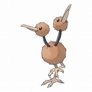 Doduo - Pokémon Wiki - Wikia
