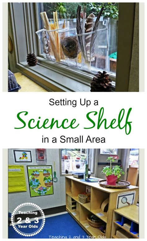preschool science center 330 | science shelf header1