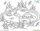 Pond Coloring Animals Worksheet Preschool Worksheets Garden Frog Frogs Education Clipart Habitat Kindergarten Sheets Preschoolers Crafts Colorear Printable Spring Animal sketch template