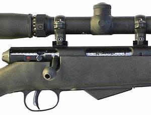 Gun Reviews  Savage Model 25 In  17 Hornet Review