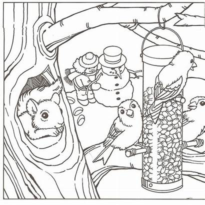 Coloring Winter Pages Adult Printable Learning