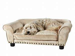 best dog bed With top dog furniture