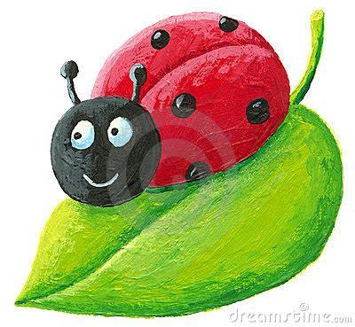 cute ladybug  green leaf royalty  stock